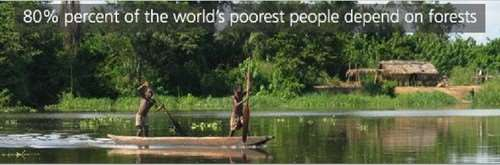 people depend on forests